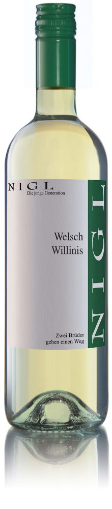 Welsch-Willinis
